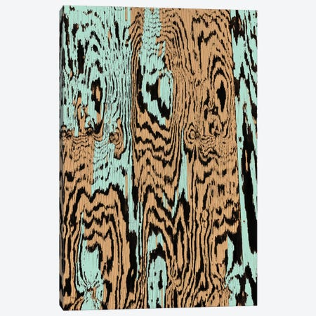 Aqua Splinters Canvas Print #CLB3} by Caleb Troy Art Print