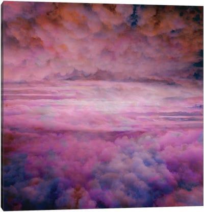 Assurance Canvas Art Print