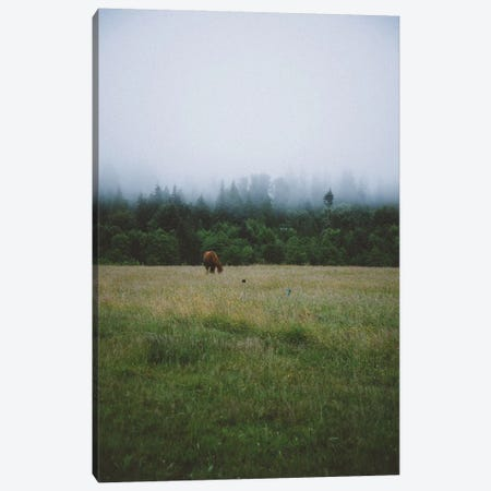 Grazing Horse Canvas Print #CLB52} by Caleb Troy Canvas Artwork