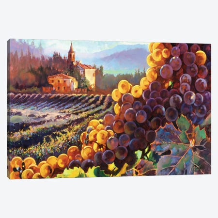 Tuscany Harvest Canvas Print #CLF1} by Clif Hadfield Art Print