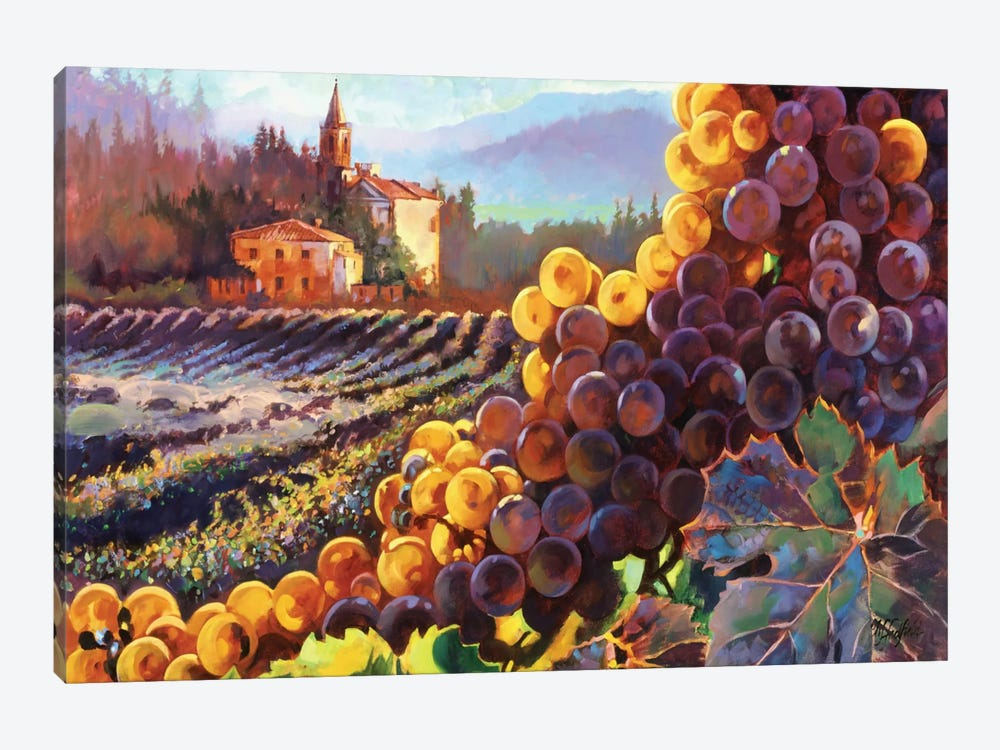 Tuscany Harvest by Clif Hadfield 1-piece Canvas Artwork