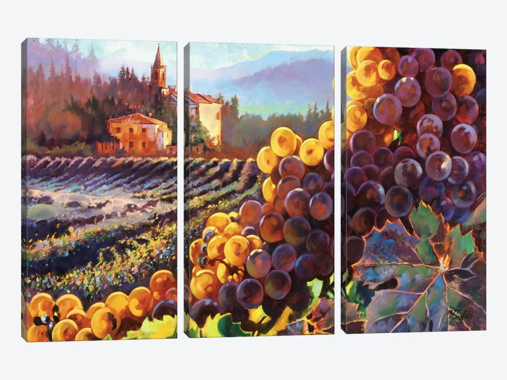 Tuscany Harvest by Clif Hadfield 3-piece Canvas Wall Art