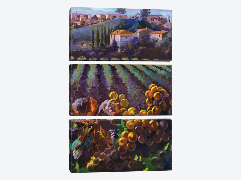 View Of Tuscany by Clif Hadfield 3-piece Art Print