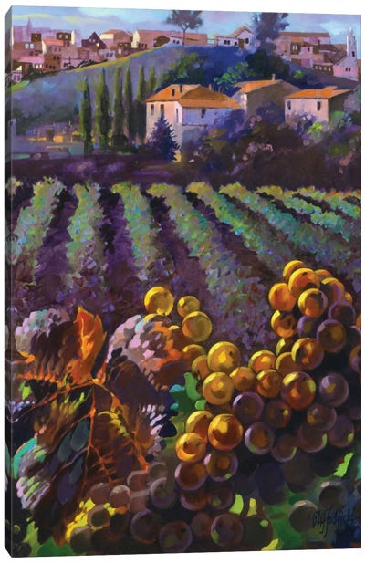 View Of Tuscany Canvas Art Print
