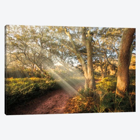 Inspiration Canvas Print #CLG1} by Celebrate Life Gallery Canvas Wall Art