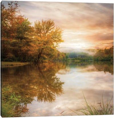 Fallen Leaves Canvas Art Print