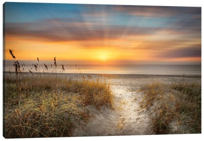 Sandy Walk At The Dunes Canvas Art Print