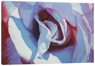 Blue Rose Canvas Art Print