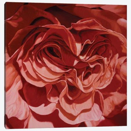 Bolo Ram Canvas Print #CLH14} by Chloe Hedden Art Print
