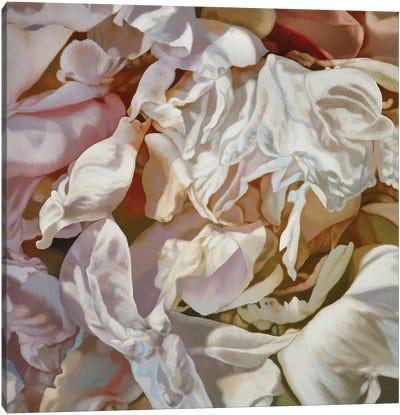 Cherdi Kala I Canvas Art Print