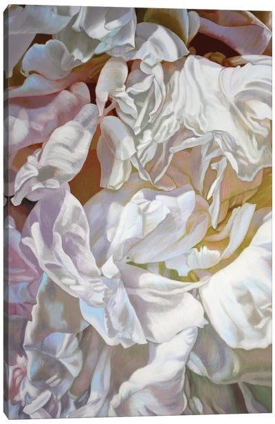 Cherdi Kala III Canvas Art Print