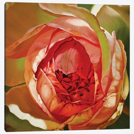 Constance Canvas Print #CLH21} by Chloe Hedden Art Print