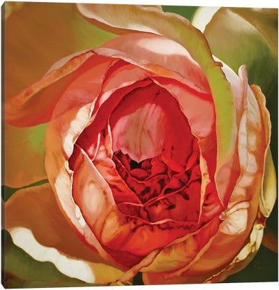 Constance Canvas Art Print