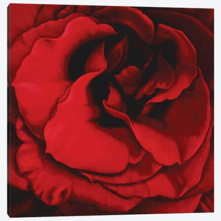 Deep Ritual Canvas Print #CLH24} by Chloe Hedden Canvas Art