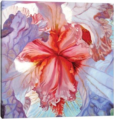 Delicacy Canvas Art Print