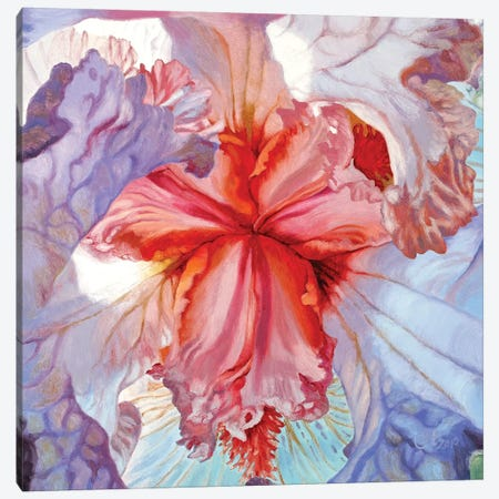 Delicacy Canvas Print #CLH25} by Chloe Hedden Canvas Art