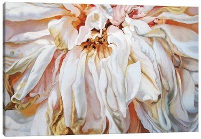 Faded Rose Canvas Art Print