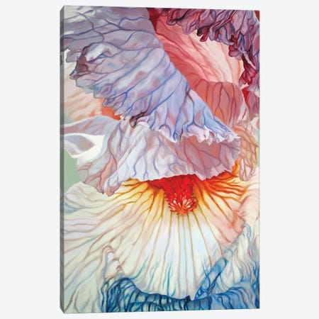 Fading Iris Canvas Print #CLH29} by Chloe Hedden Art Print