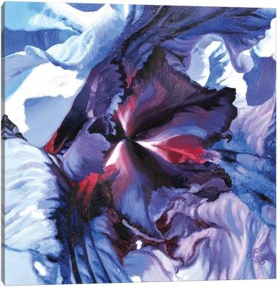 Heart Storm Canvas Art Print