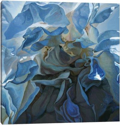Inner Light Canvas Art Print