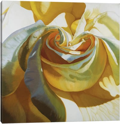 Intimacy II Canvas Art Print