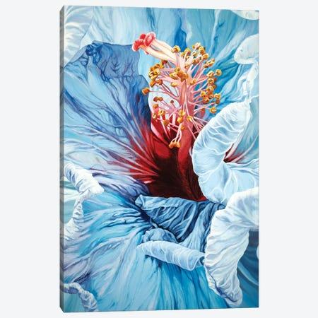 La Jolla Hibiscus Canvas Print #CLH48} by Chloe Hedden Canvas Art Print