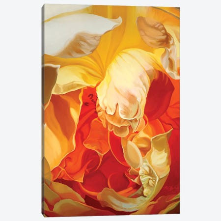 Rose For John Canvas Print #CLH64} by Chloe Hedden Canvas Art