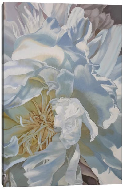 Salt Spring Peony IV Canvas Art Print