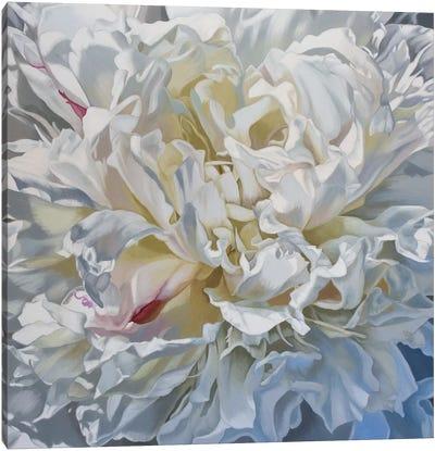 Salt Spring Peony V Canvas Art Print