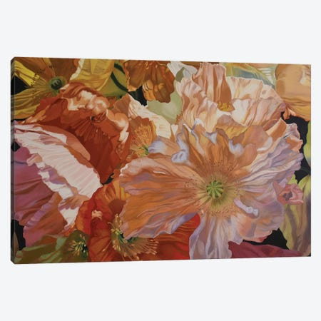 Salt Spring Poppies Canvas Print #CLH70} by Chloe Hedden Canvas Wall Art