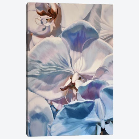 White Orchids Canvas Print #CLH76} by Chloe Hedden Art Print