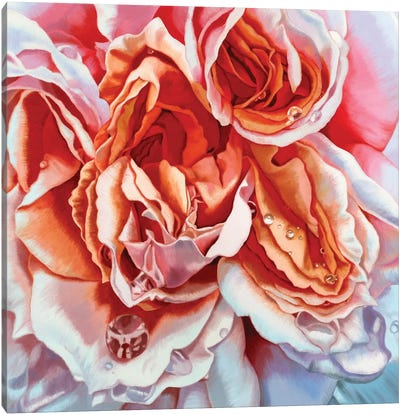 Bliss II Canvas Art Print
