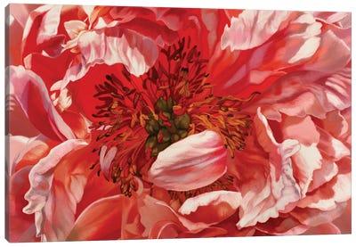 Jane Elizabeth Canvas Art Print