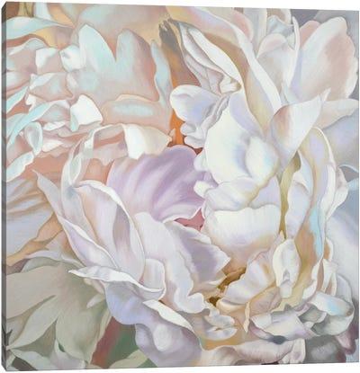 White Peony Canvas Art Print