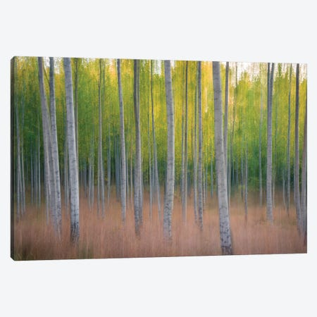 Intentional Camera Movement 3-Piece Canvas #CLI15} by Christian Lindsten Canvas Artwork