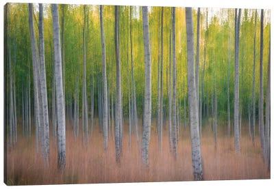 Intentional Camera Movement Canvas Art Print