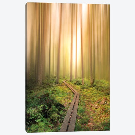 Into The Light Canvas Print #CLI16} by Christian Lindsten Canvas Artwork