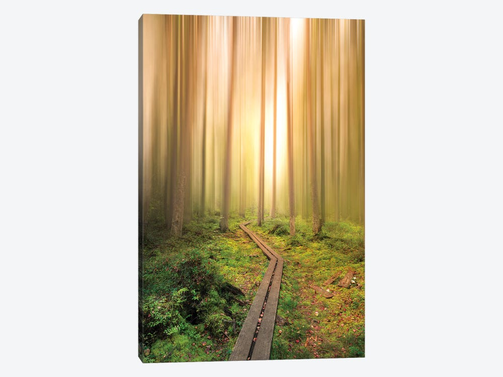 Into The Light by Christian Lindsten 1-piece Canvas Print