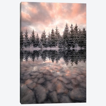 Melting Canvas Print #CLI17} by Christian Lindsten Canvas Art