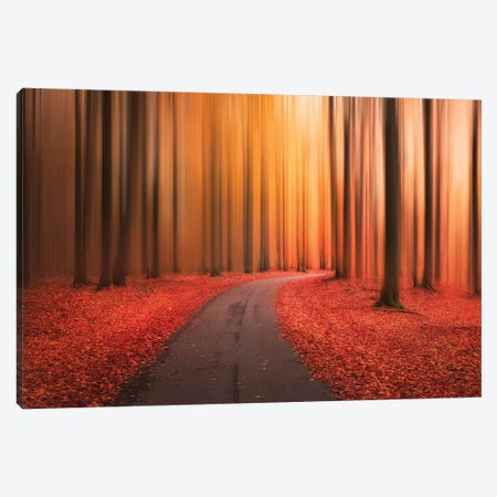 Path To Unknown Canvas Print #CLI19} by Christian Lindsten Canvas Art Print