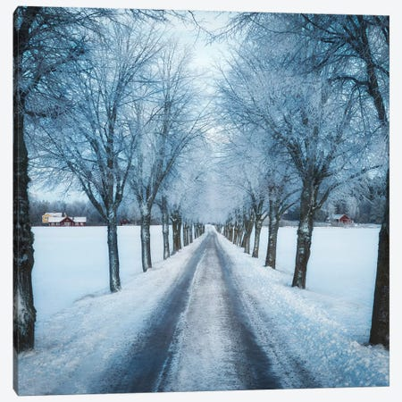 Swedish Winter Canvas Print #CLI25} by Christian Lindsten Canvas Art Print