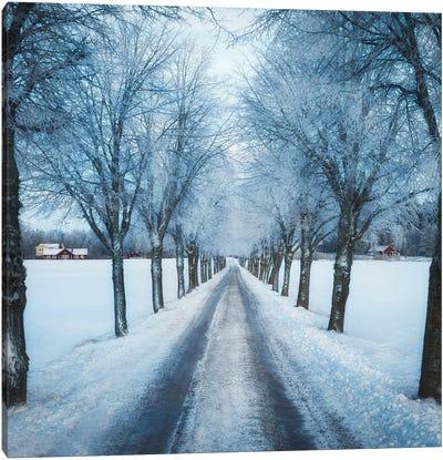 Swedish Winter Canvas Art Print