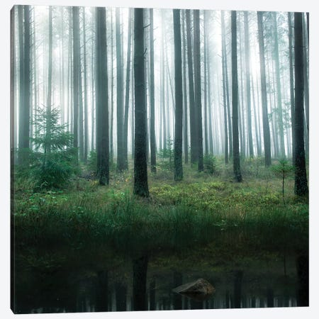 Lake In Forest Canvas Print #CLI3} by Christian Lindsten Canvas Artwork