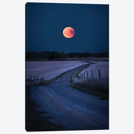Bloodmoon 2018 Canvas Print #CLI7} by Christian Lindsten Canvas Art Print