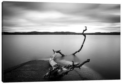 Branch Long Exposure Lake Canvas Art Print