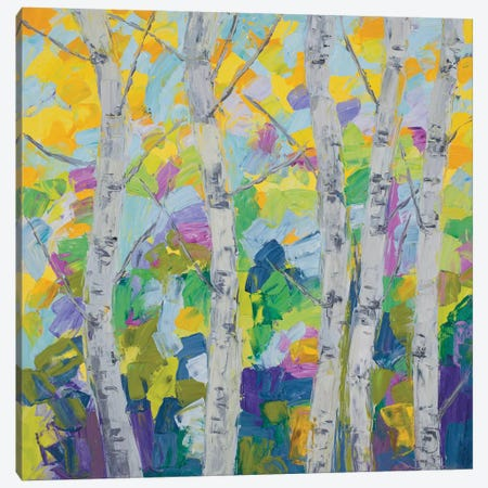 Dancing Birch Tree I Canvas Print #CLK19} by Ann Marie Coolick Canvas Art Print