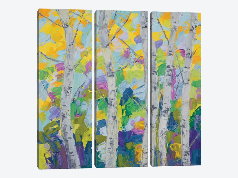 Dancing Birch Tree I by Ann Marie Coolick 3-piece Art Print
