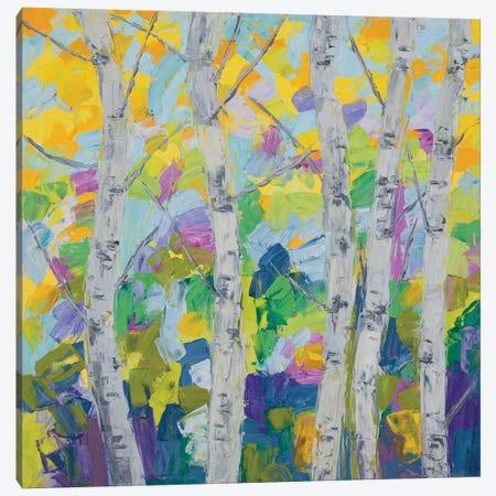 Dancing Birch Tree I Canvas Print #CLK19} by Ann Marie Coolick Canvas Art Print