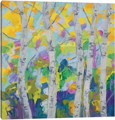 Dancing Birch Tree I Canvas Art Print