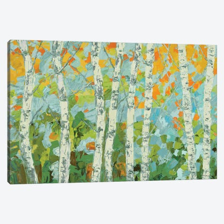 Autumn Dancing Birch Tree Canvas Print #CLK41} by Ann Marie Coolick Canvas Artwork